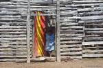Żywcem w Afryce