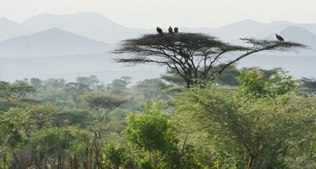 7 kolorów Afryki - wywiad