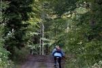 Trasa rowerowa w okolicy Baraniej Góry