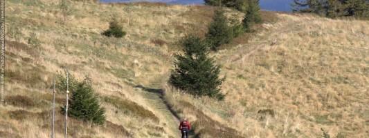 NRB: Nieznakowane Rowerostrady Beskidzkie część III: Magurka Radziechowska i Golgota Beskidów