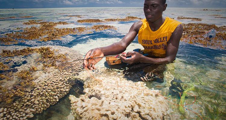 Zanzibar – fotoekspedycja