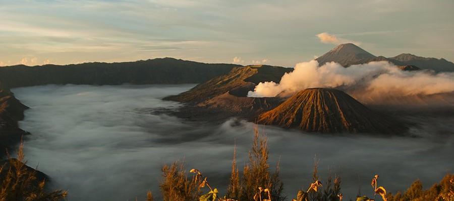 Wakacje na wulkanie – z wizytą u Waranów