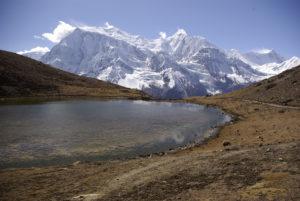 BluEmu - Trekking wokół Annapurny