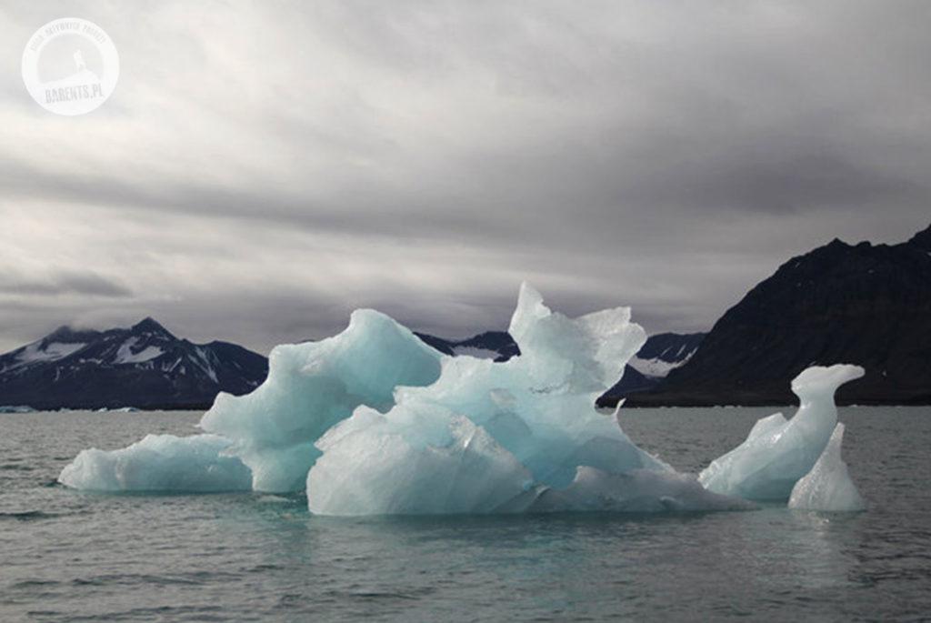 Wyprawa na Spitsbergen - Barents