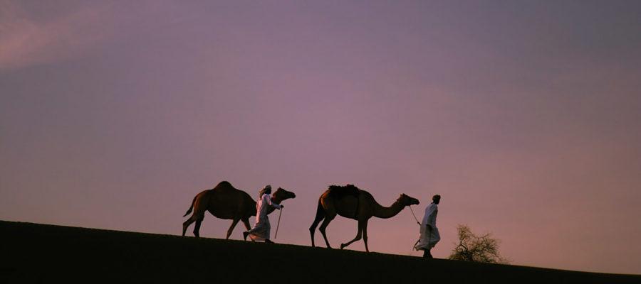 Oman – skarby Arabii