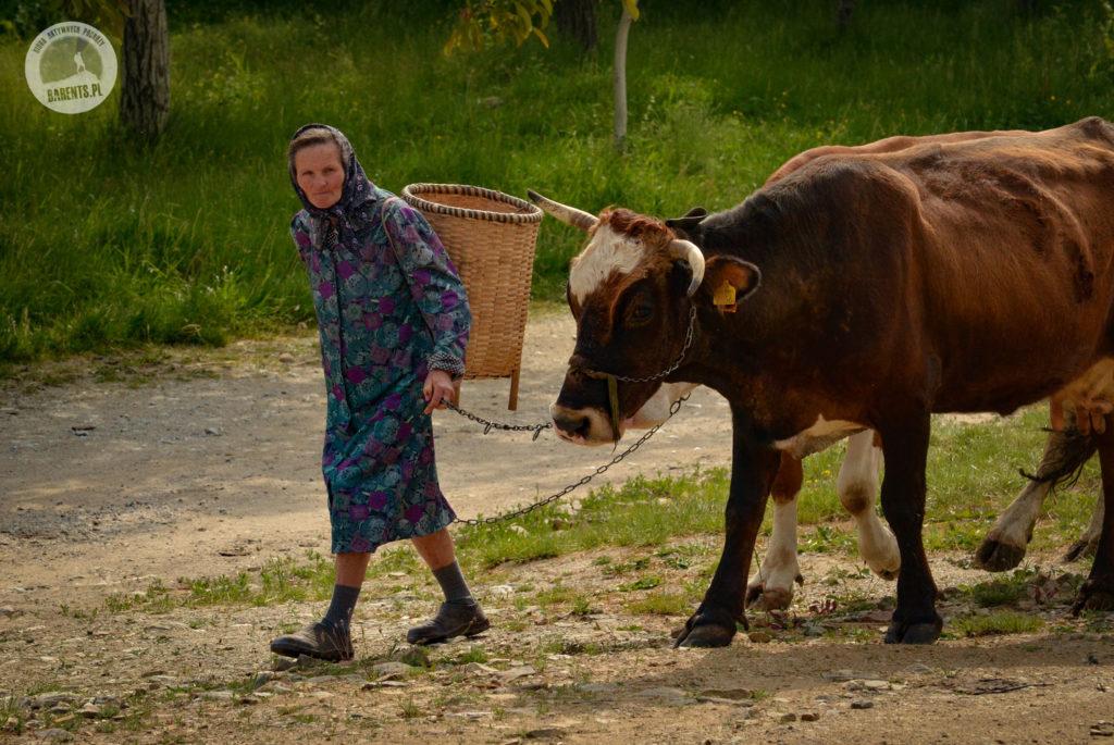 Majówka 2018 w Rumunii z biurem Barents