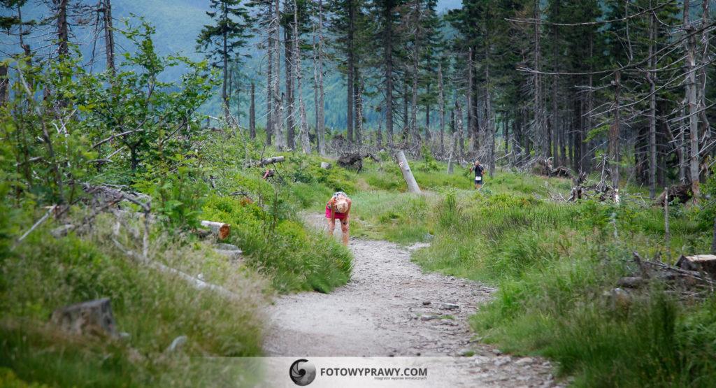 maraton-gorski-lesnik-lato-2018__fotowyprawy__094