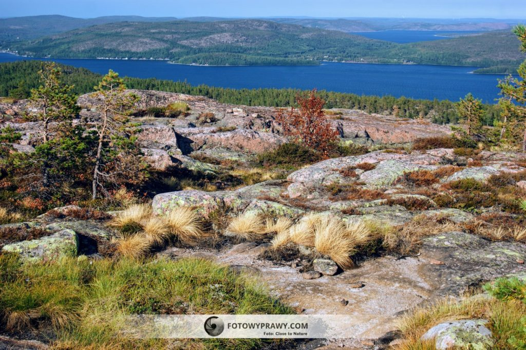 Skuleskogen NP