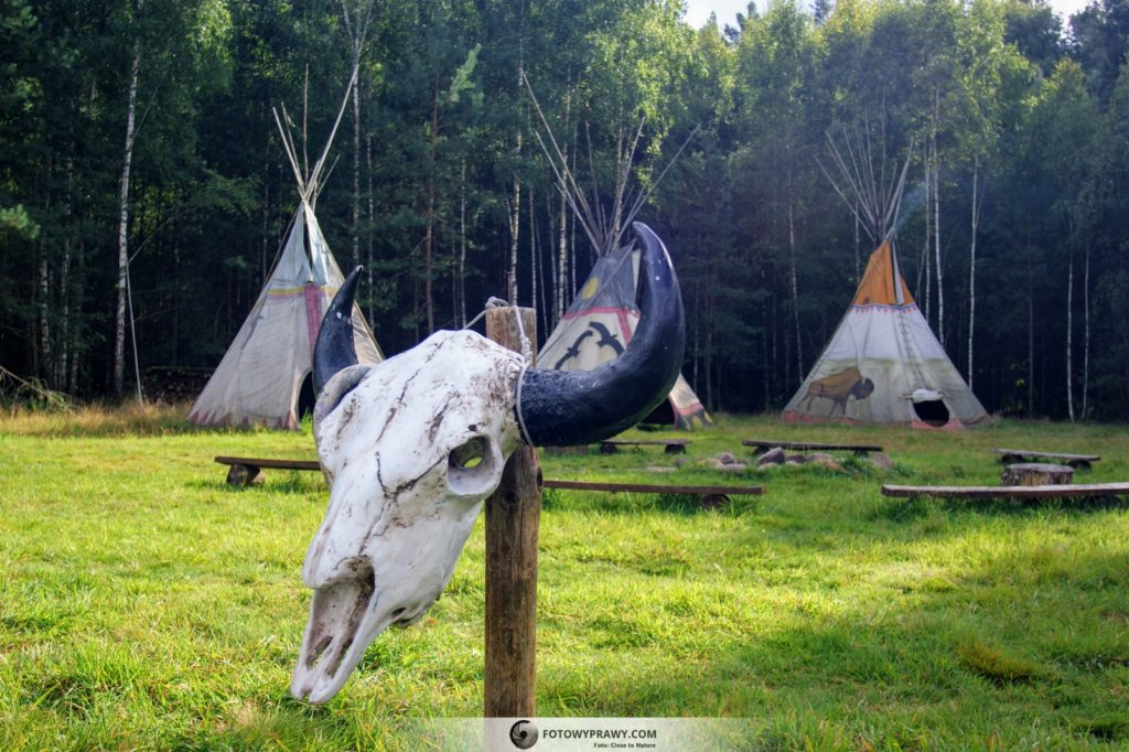Puszczykówka - Kraina Puszczyka