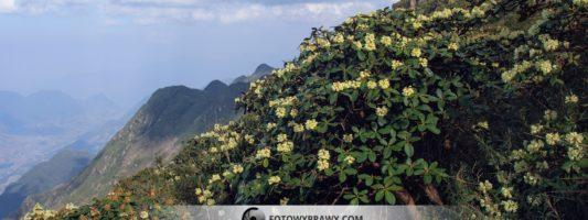 Jak zdobywano Phan Xi Păng – Wietnam część III