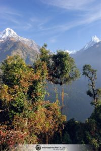 Trekking do Sanktuarium Annapurny