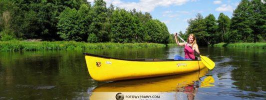 Polskie lasy też pachną żywicą – kanadyjką przez Wartę