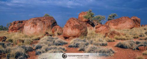 W poszukiwaniu Tęczowego Węża* – Australia Outback