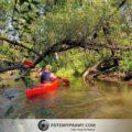 Biała Przemsza – dzika rzeka