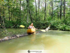 Biała Przemsza - Dzika rzeka!